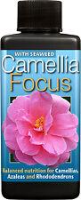 Camellia Focus Plant Food - Nutrients - Ericaceous Plants - 100ml