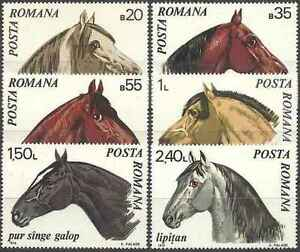 Timbres-Chevaux-Roumanie-2571-6-lot-15457