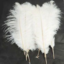 10PCS Quality Ostrich Feathers Nature Feathers 40-45CM/16-18inch White