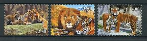 Tajikistan-2016-MNH-Wild-Cats-Big-Cats-Tigers-Lions-3v-Set-Wild-Animals-Stamps