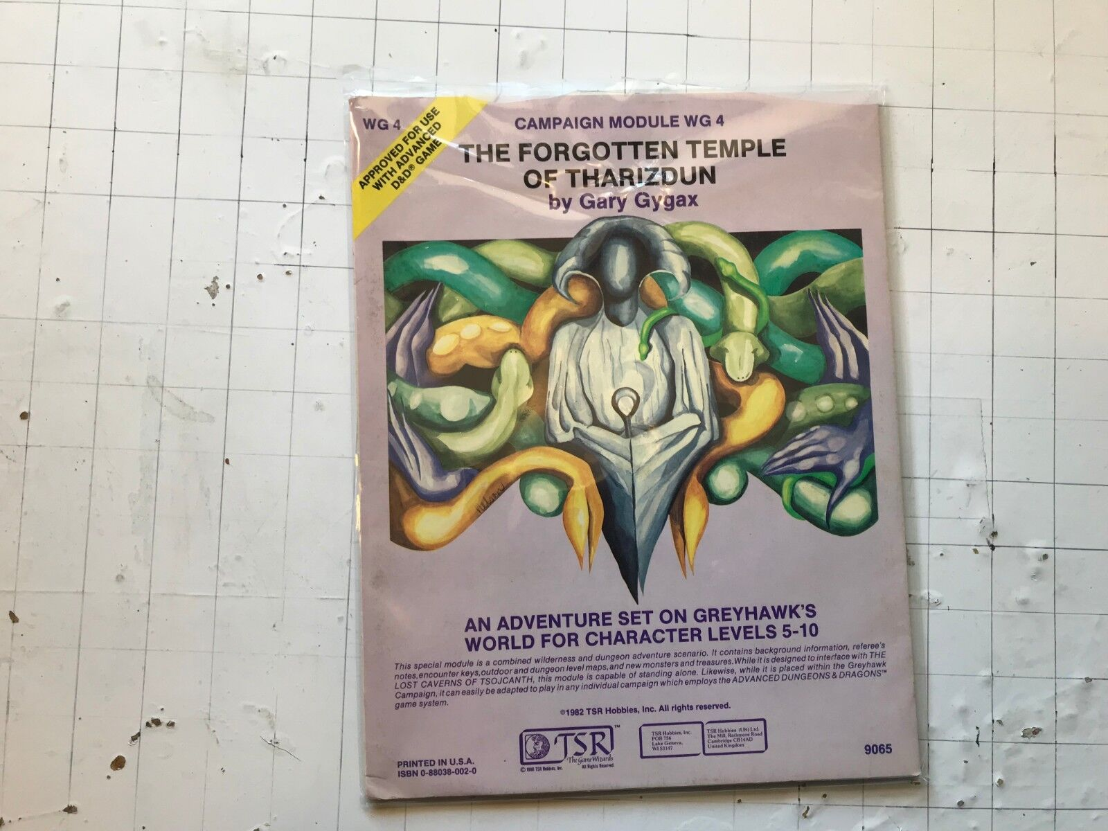 WG4 the Forgotten Temple of Tharizdun AD&D TSR 1982 Gary Gygax 9065 module d&d