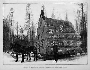 LOGGING-IN-MICHIGAN-1885-HISTORY-HORSE-DRAWN-LOAD-LOGGERS-SLEIGH-WINTERTIME-SNOW