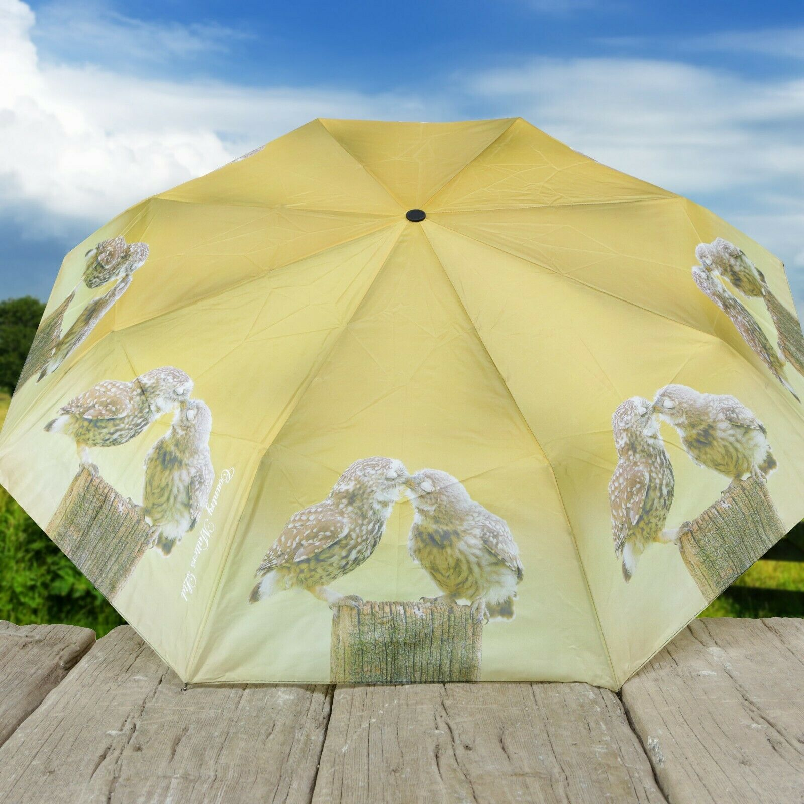 Country Matters Bird Design Telescopic Folding Brolly Umbrella - Kissing Owls