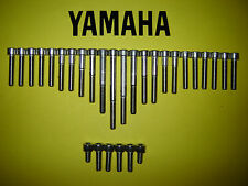 Yamaha XVS650 650cc Dragstar Custom Acciaio inox SS Copertura Motore Allen Kit