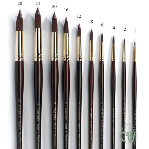 Long Handle Winsor /& Newton Artists Galeria Round Single Brushes Acrylic /& Oil