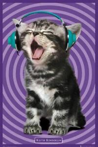 Keith-Kimberlin-Kittens-Headphones-Maxi-Poster-61cm-x-91-5cm-new-and-sealed