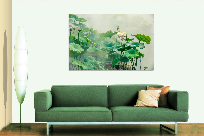 3D greene Lotus 534 Fototapeten Wandbild BildTapete AJSTORE DE Lemon