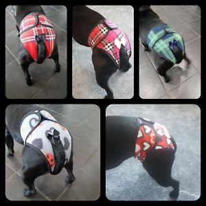 Handmade-Hygiene-Knickers-nappy-dog-season-pants-dog-panties-poochie-pants