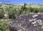 Die Petroglyphen vom Usektal in Kasachstan von Luc Hermann (2011, Taschenbuch)