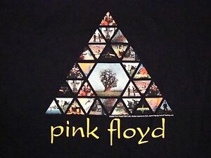 Details about Pink Floyd Album Covers Dark Side of The Moon Prism Rainbow  Black T Shirt L