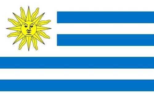 Fahne Flagge Uruguay 60 x 90 cm