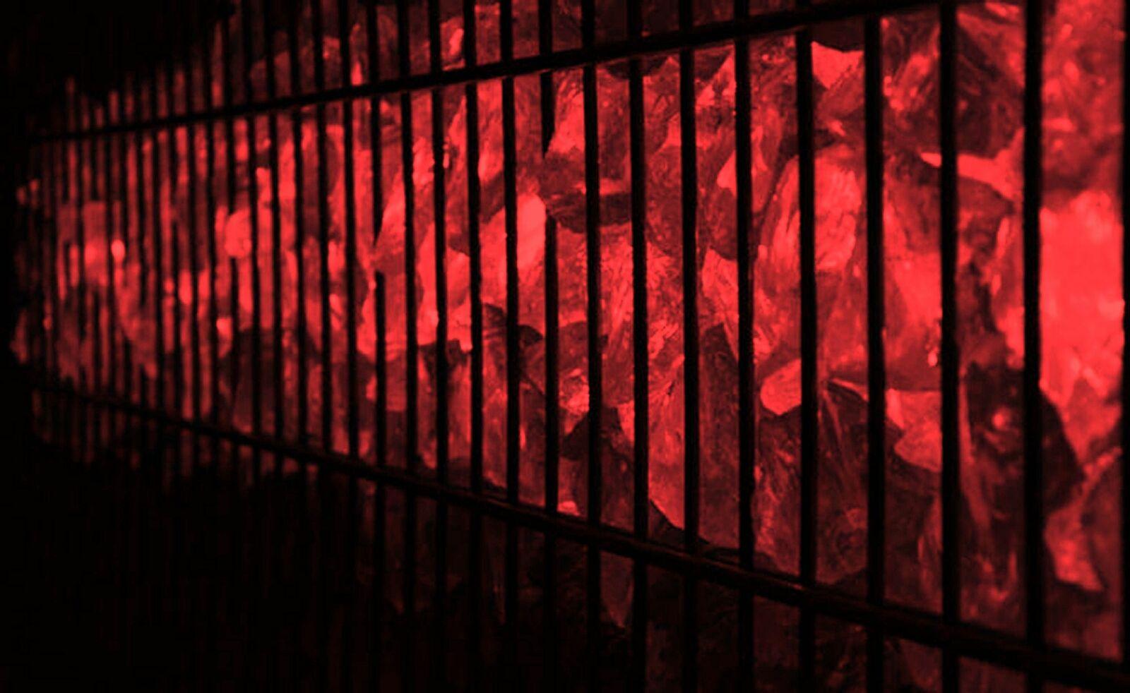 Led Gabionen Licht Beleuchtung LED 2x0,60m länge 360° Farbe rot Garten 230 Volt