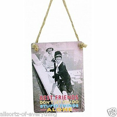 Friends Dont Let Friends Do Silly Things Alone Metal Sign Plaque 9x6.5cm