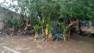 Terreno en venta en Villa de Álvarez Centro