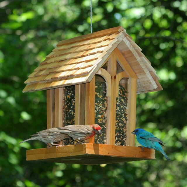 Bird Feeder Squirrel Proof Wild Seed Hanging Garden