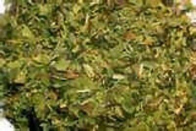 Peppermint Herb  2 oz