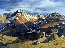 "Sarah Woods ""Rocky Mountain Splendor"" Mountain Goat Print Signed 24"" x 18"""