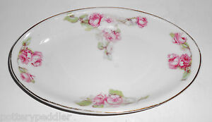 Z S & Co Bavaria Porcelain Pink Roses W/Gold Oval Tray!