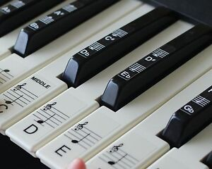 Keyboard or Piano Stickers up to 61 KEY keyboard for the black and white keys - <span itemprop='availableAtOrFrom'>Christchurch, United Kingdom</span> - Keyboard or Piano Stickers up to 61 KEY keyboard for the black and white keys - Christchurch, United Kingdom