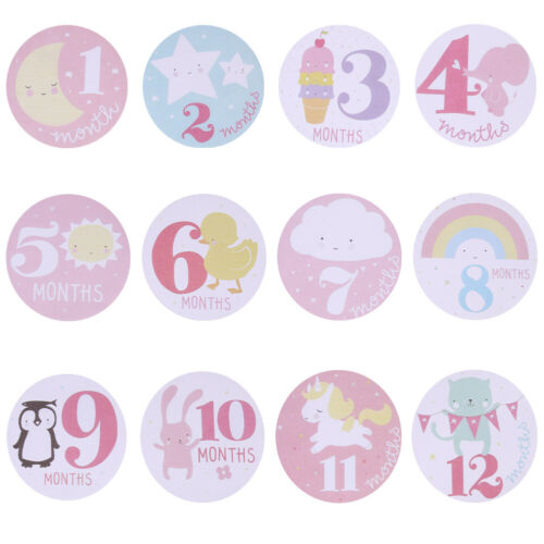 Baby Monthly Photograph Stickers Month 1-12 Milestone Stickers L/&6 Pink