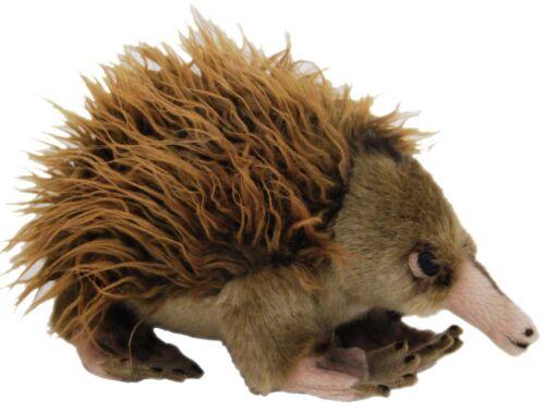"*NEW* AUSTRALIAN ECHINDA /""GANYI/"" SOFT PLUSH STUFFED TOY 25cm//10inch"