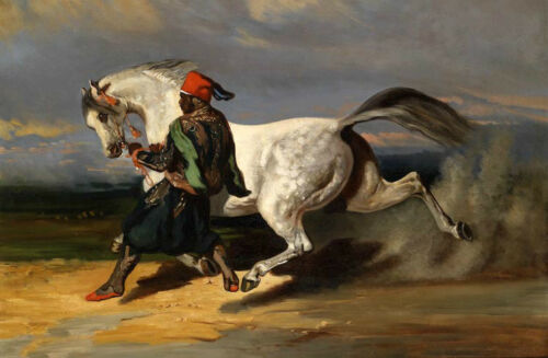 Oil painting male portrait Arab man with Frightened white horse In the desert