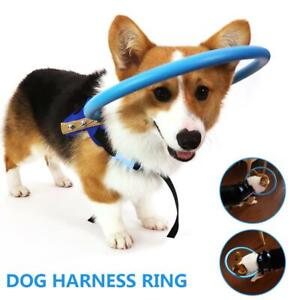 Blind-Pet-Dog-Safe-Halo-Guide-Training-Behavior-Aid-Dogs-Protect-Angel-Wing