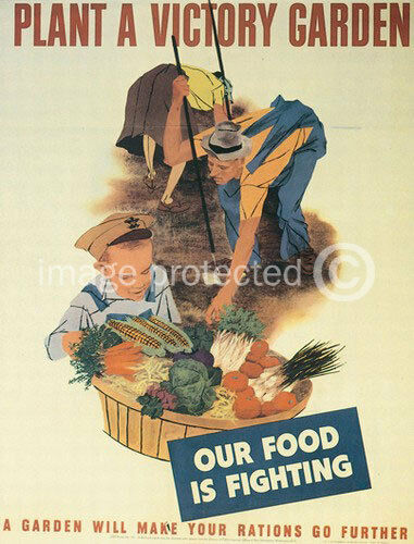 24x36 Plant A Victory Garden WWii US Propaganda Poster