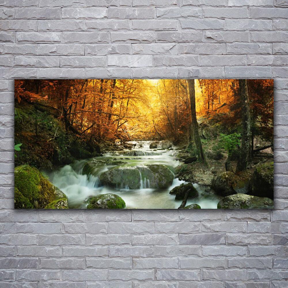 Verre Imprimer Wall Art Image 120x60 Photo Cascade Forêt Pierres Nature