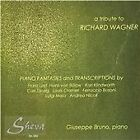 Tribute to Richard Wagner: Piano Fantasies & Transcriptions (2013)