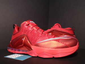 74c14ac12db 2014 Nike LEBRON XII 12 LOW UNIVERSITY RED OCTOBER SILVER BLACK ...
