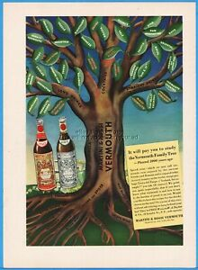 1939 Martini & Rossi Vermouth Family Tree Cocktails Long Straight Drinks Bar Ad