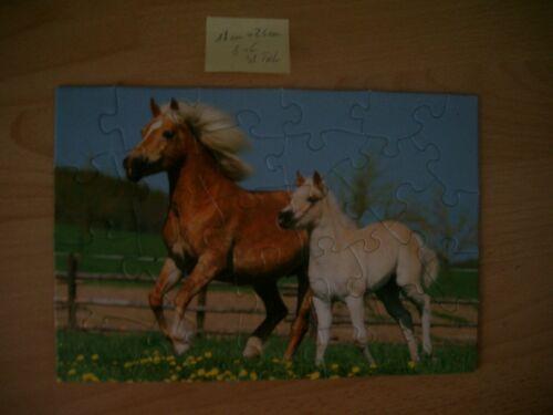 Pferde Puzzle 24 Teile 18 cm x 26 cm galop Puzzles & Geduldspiele Stute mit Fohlen