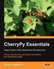 CherryPy Essentials: Rapid Python Web Application Development by Sylvain Hellegouarch (Paperback, 2007)