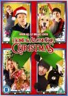 Home And Alone for Christmas (DVD, 2013)