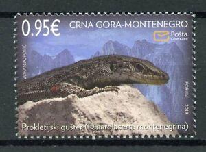 MONTENEGRO-2019-neuf-sans-charniere-faune-Prokletije-ROCK-LIZARD-1-V-Set-Lezards-Reptiles-timbres