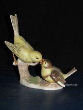 +#A015455_09 Goebel Archivmuster Bunte Vogelwelt Serie 38-506 Kanarienvogel TMK5