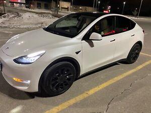 2021 Tesla Model Y -