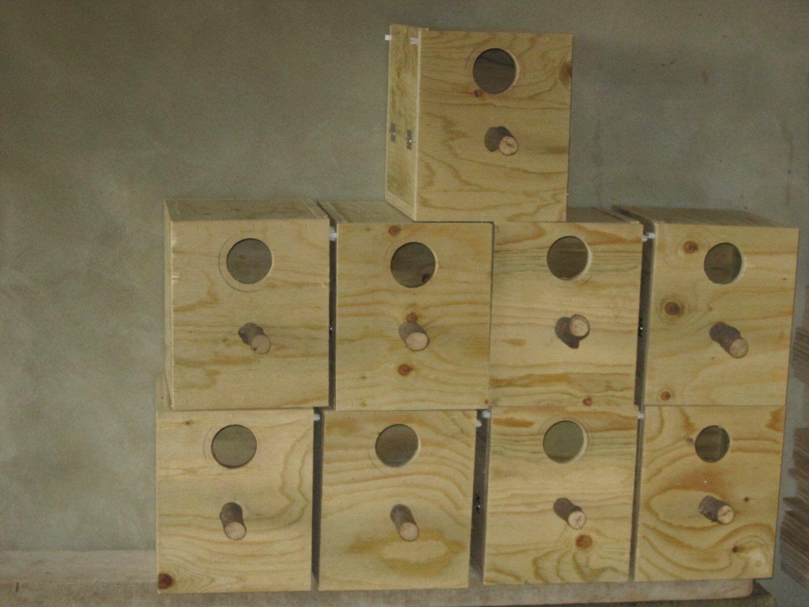 8 nids calopsite nichoir oiseaux