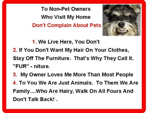 Funny Dog Schnauzer House Rules Refrigerator Magnet Gift Card Insert