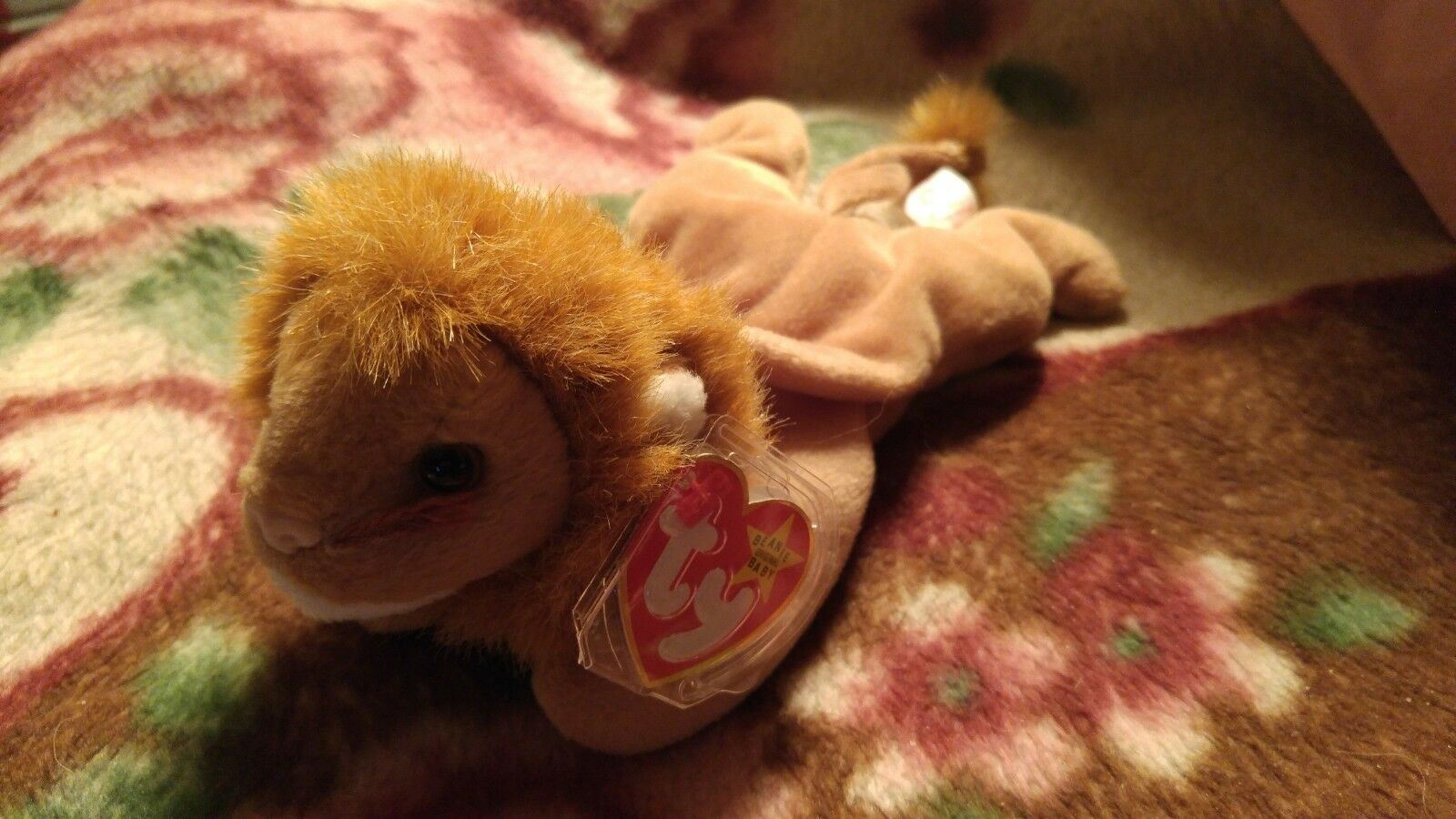 RARE Retired  Roary  Ty Beanie Babies w MINT tags, 1996 Stamp
