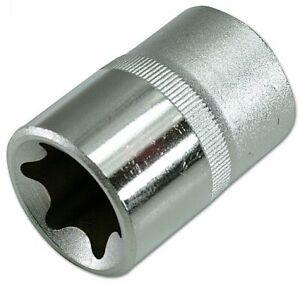 Stern Buchse 1/2&quot Lecker - E12 1537 Von Laser