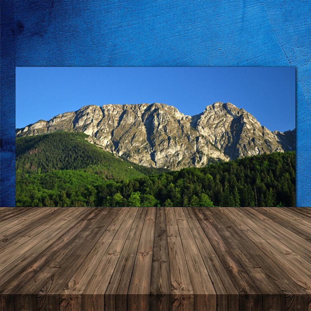 Crédence de cuisine en verre Panneau 120x60 Nature Montagne Forêt