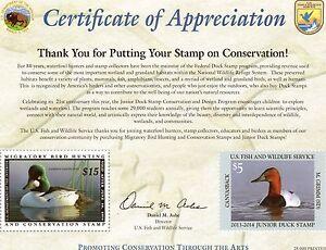 RW80-JDS21-Certificate-Of-Appreciation-02-COA13