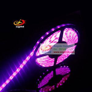 3528 Pink SMD 60(120)LEDs/Meter Flexible Tape Rope Strip White/Black FPC DC12V