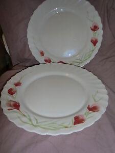 Image is loading Arcopal-France-Vintage-Milk-Glass-Pink-Red-Crocus- & Arcopal France Vintage Milk Glass Pink/Red Crocus Dinnerware Plates ...