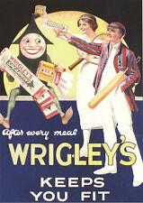 ROBERT  OPIE  ADVERTISING  POSTCARD  -  WRIGLEY'S  GUM