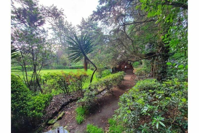 Vive en el Bosque en plena Ciudad de México Fraccinamiento Ecológico Tlalpuente