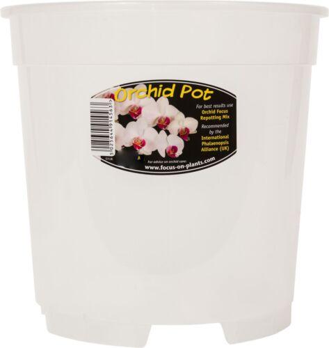 3 x  Orchid Pots 12cm
