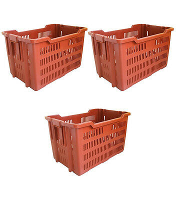3pz Cesta Pane Transport Container Duraflex Arancio Forata 75x50 Cm X H 42cm
